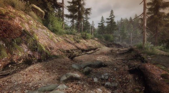 screenshot the vanishing of ethan carter indie the astronauts toter wald