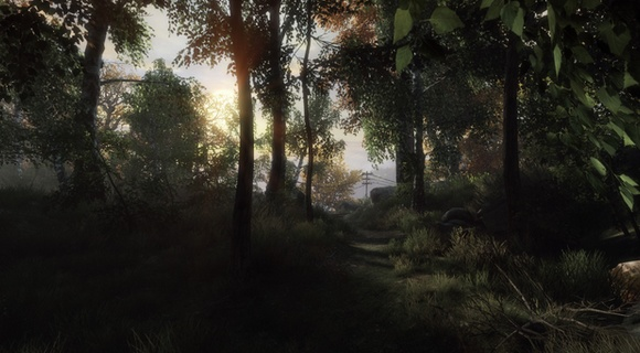 screenshot the vanishing of ethan carter indie the astronauts waldweg