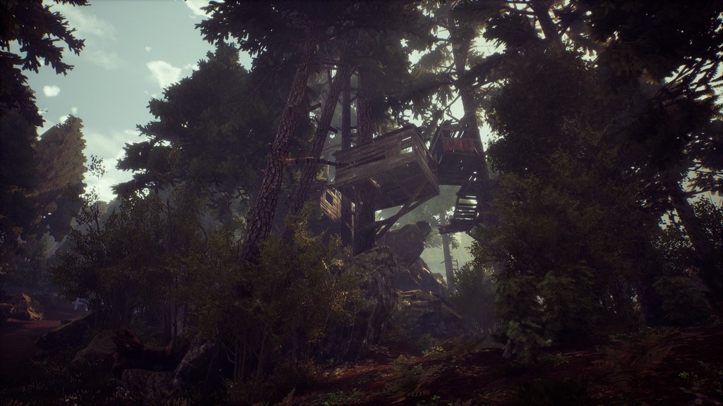 Das verfallene Baumhaus wäre ein ideales Versteck.